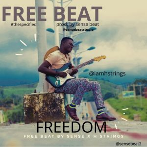 Download Freebeat:- Freedom (Prod By Sensebeat And H Strings)