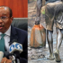 Oil Discovery Exposed Nigeria's Economy To Vulnerability – Emefiele The Governor, Central Bank of Nigeria, Mr Godwin Emefiele, has stated that oil discovery exposed Nigeria's economy to vulnerability.