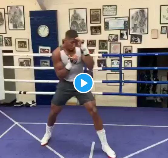 Popular Professional boxer, Anthony Oluwafemi Olaseni Joshua known as Anthony Joshua was seen training ahead of rematch with Andy Ruiz. Gistvic Reports.