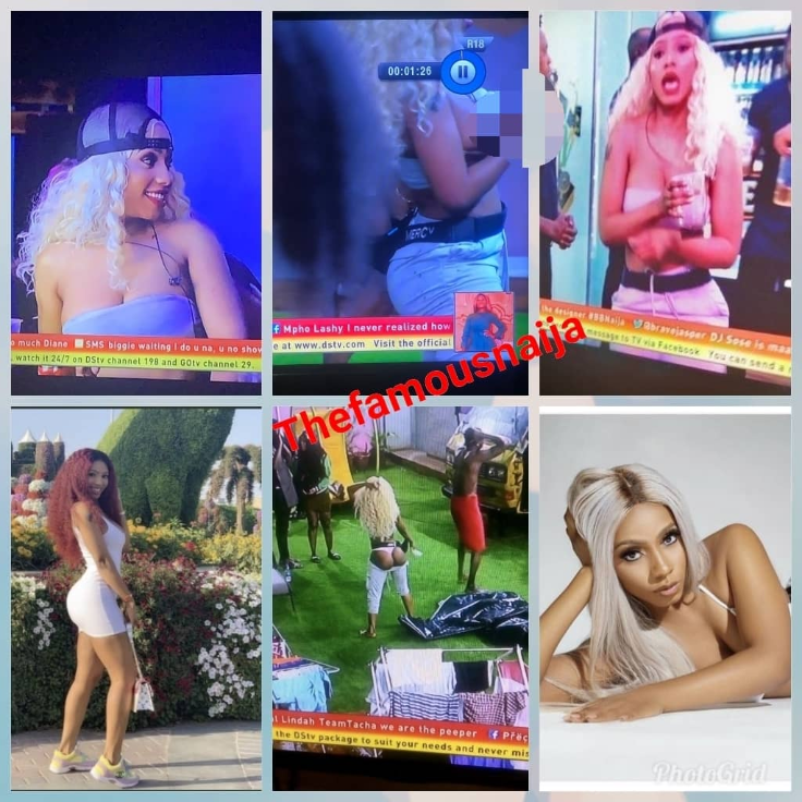 Like Tboss, Like Mercy  Watch the moment 'most beautiful' BBNaija housemate, Mercy exposed her standing, firm boobs & nipple on National TV – BBNaija.  Recall that Tboss also exposed her boobs during the BBNaija 2017.  During the Saturday night party, Mercy got inebriated and started to kind of misbehave, first she exposed her panties and bum.  Then she later exposed her full boobs.  This has got Nigerians talking on Twitter as Mercy and her boobs trend. Fans, Nigerians say it is still standing.