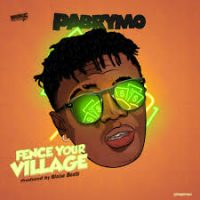 Download Music Mp3:- PaBrymo – Fence Your Village