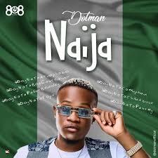 Download Music Mp3:- Dotman – Naija (SayNoToXenophobia)