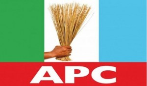 A former Commissioner, Abdulkadir Mai, former Council Chairman Ibrahim Kana, former member of House of Assembly Service Commission, Yawale Boltungo and many others, all of Shelleng Local Government Area of Adamawa State, have been suspended from the All Progressives Congress (APC).