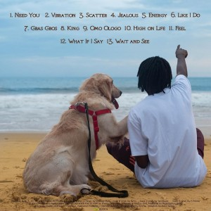 Download Music Mp3:- Fireboy DML – Like I Do