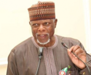 The Comptroller-General of Nigeria Customs Service (NCS), Col. Hameed Ali (rtd) has vowed to sack any officer who cannot live within his or her remun