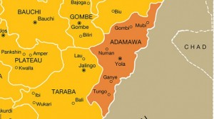 A local vigilante who held the title of Kaigaman Ybango , Alhaji Haruna Gamjango , has reportedly killed three suspected kidnappers at his reside