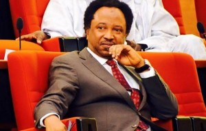 Officials of the Economic and Financial Crimes Commission (EFCC) are searching the Abuja residence of Shehu Sani, a former Senator.