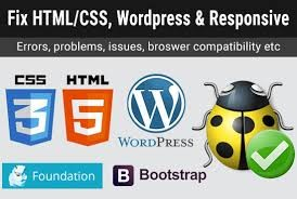 As a website owner, you may be faced with one challenge or the other and sometimes you may not even know where the cause of the issue is probably due to your little web development knowledge