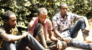 According to The Nation, three herdsmen said to have been terrorizing Enugu state and environs have bee arrested by the Enugu state police command.