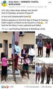 A rare size of python was seen and killed at living Faith Church (winner's chapel) Udu Delta state on during their 21 days prayer and fasting programs as reported by a Facebook user (Ariyo Kemi).   LFC Udu, Delta State defeats the Devil!!! God of Oyedepo answers Prayers!!! A rare and Unbelievable Event�   Python appears on the first day of Prayer & Fasting… Didn't expect a Python to be found in a City�….To God be the Glory, it was captured and killed.