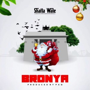 Download Music Mp3:- Shatta Wale – Bronya