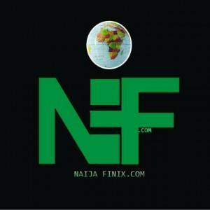 Naijafinix First Official Artwork