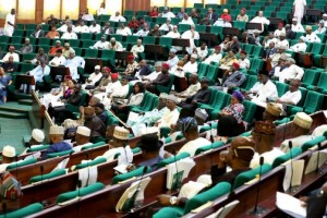 There was a mild confusion within the House of rep in a plenary session when the notion to bring back Nigerians based in China due to the outbreak of the deadly corona virus was rejected