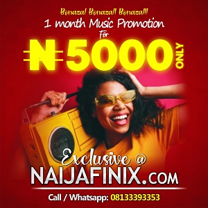 Music Artistes:- Promote Your Music And Videos Here On Naijafinix