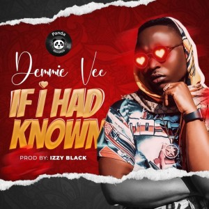 Download Music Mp3:- Demmie Vee – If I Had Know