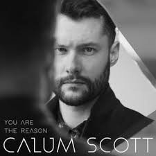 Download Music Mp3:- Calum Scott - You Are The Reason