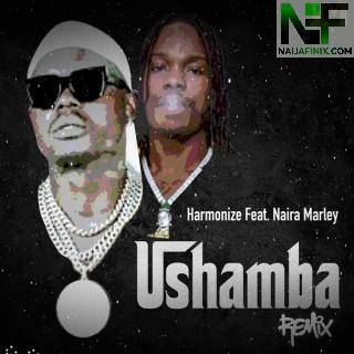 Download Music Mp3:- Harmonize Ft Naira Marley – Ushamba (Remix)