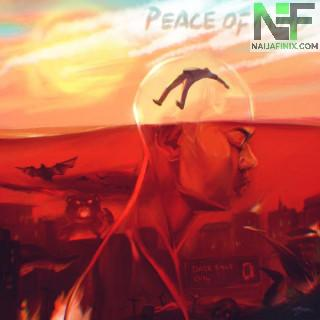 Download Music Mp3:- Rema – Peace Of Mind