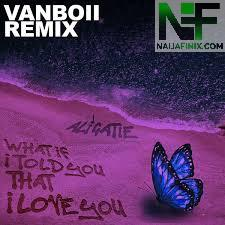 Download Music Mp3:- Vanboii - What If I Told You That I Love You (Remix)