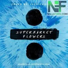 Download Music Mp3:- Ed Sheeran - Supermarket Flowers