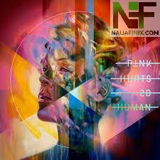 Download Music Mp3:- P!nk Ft Chris Stapleton - Love Me Anyway
