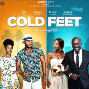 Download Movie Video:- Cold Feet