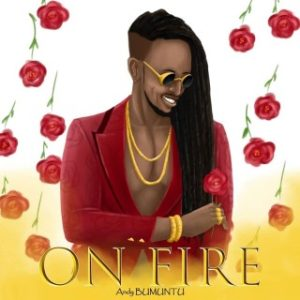 Andy Bumuntu - On Fire (MP3 Download)